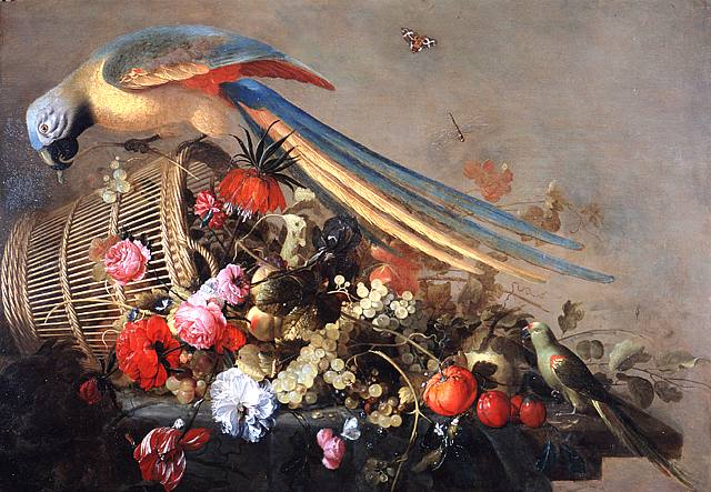 6 17 Cornelis de Heem Dutch Baroque Era Painter 1631-1695 Still Life with Bird